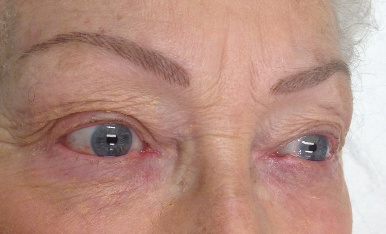 Eyebrows block feather touch by lyn quade cosmetic for Tattoo apprenticeship age